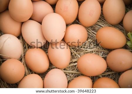 Fresh eggs arranged in a straw barn setting. - stock photo