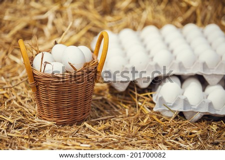 fresh eggs in a basket - stock photo