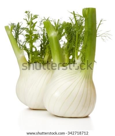 Fresh fennel bulb isolated on white background close up - stock photo
