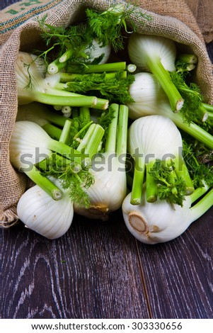 Fresh fennel on wooden background - stock photo