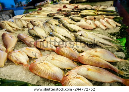 Fresh fish - stock photo