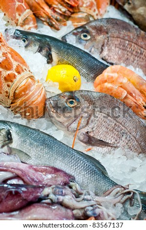 Fresh fish and seafood arrangement