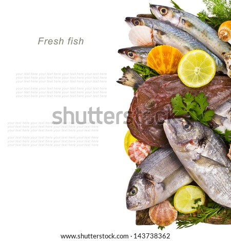 fresh fish bream, monkfish, cod, sole Sprinkle with salt and decorated with leaves and herbs isolated on white background - stock photo