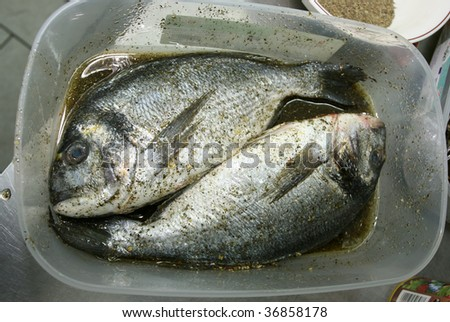 Fresh fish Dorado (sea bream) with spices in a tray