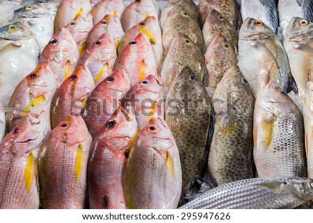 fresh fish seafood in market closeup background - stock photo