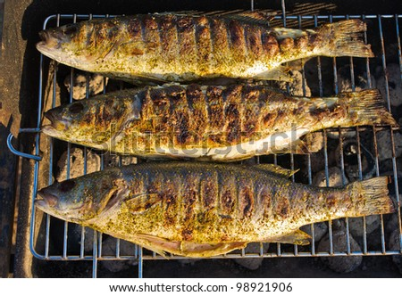 Fresh fishes on the BBQ
