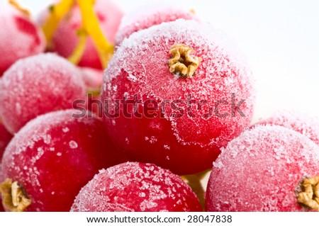 fresh frozen fruit in ice. - stock photo