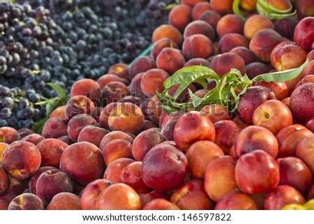 fresh fruits on food market