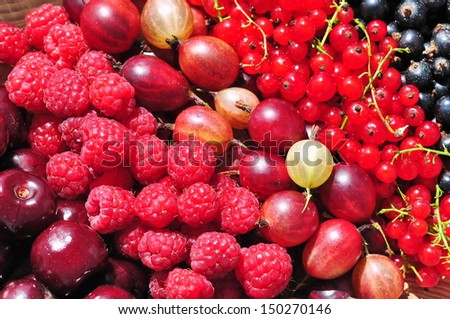 Fresh fruits - red currant, gooseberry, blueberry, raspberry and cherry - stock photo