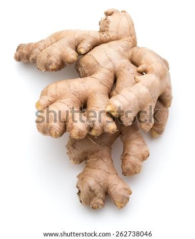 Fresh ginger root or rhizome isolated on white background cutout - stock photo