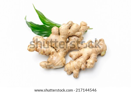 Fresh ginger with leaves isolated on white background - stock photo