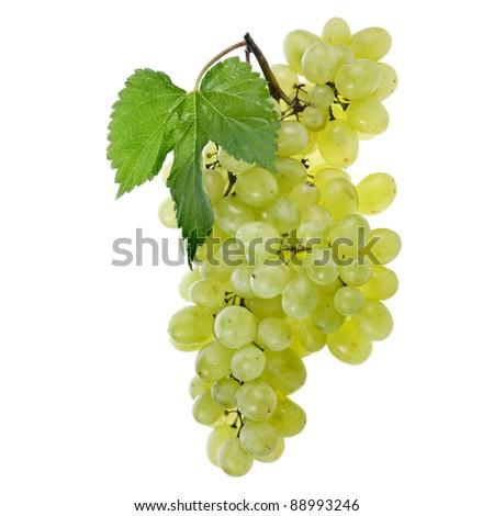 fresh grape isolated on white background  - stock photo