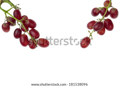 Fresh grapes isolated on white background corner - stock photo