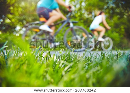 Fresh grass by the road for riding bicycles in park - stock photo