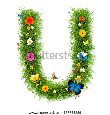 """Fresh grass letter """"U"""" with blooms and butterflies. isolated on white background - stock photo"""