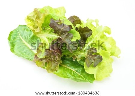 Fresh green and purple cabbage made vegetarian salad put on pink tray with white background.