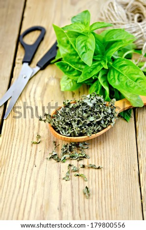 Fresh green basil and dry in the spoon, scissors, ball of twine on a wooden boards background
