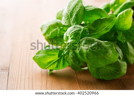 Fresh green basil leaves on a rustic wooden background, selective focus - stock photo