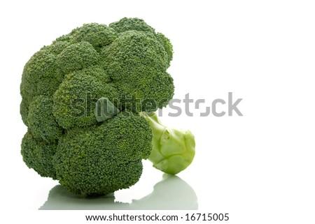 Fresh green Broccoli - stock photo