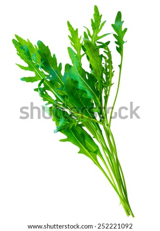 fresh green bunch salad arugula(ruccola or rukkola) leaves isolated on white background - stock photo