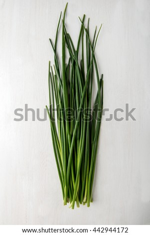 Fresh green chives on grey background - stock photo