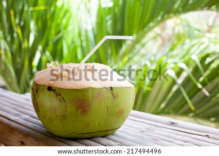 Fresh green coconut on palm tree background  - stock photo