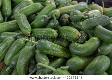 Fresh green cucumber gherkin  for sale at city market. Baku. Azerbaijan - stock photo