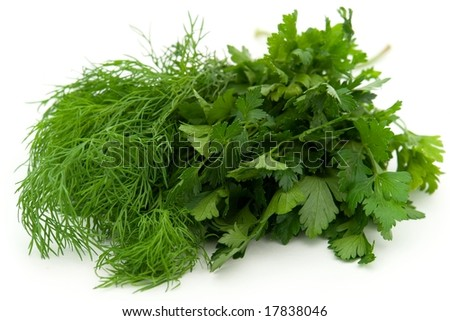 Fresh green dill and parsley on a white background - stock photo