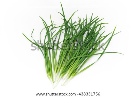 fresh green Garlic chives vegetable, on white background chives leaves (leek) isolated on pure white     - stock photo