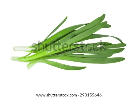 Fresh green garlic leeks, isolated on white, with clipping path - stock photo