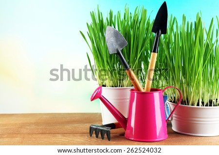 Fresh green grass in small metal buckets, watering can and garden tools on wooden table, on bright background - stock photo
