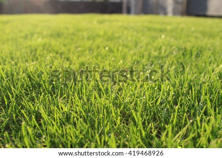 fresh green grass lawn in sunlight, landscaping in the garden, beauty of  summer season - Landscaping Stock Images, Royalty-Free Images & Vectors Shutterstock