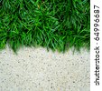 Fresh green grass on concrete background - stock photo