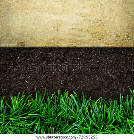 Fresh green grass on soil and sand stone background - stock photo