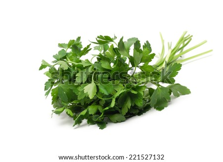 fresh green grass parsley dill onion herbs mix - stock photo