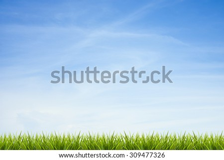 Fresh green grass under blue sky ,clouds and sunlight of summer background - stock photo