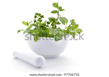 Fresh green herbs in white porcelain mortar and pestle on white background with room for copy - stock photo