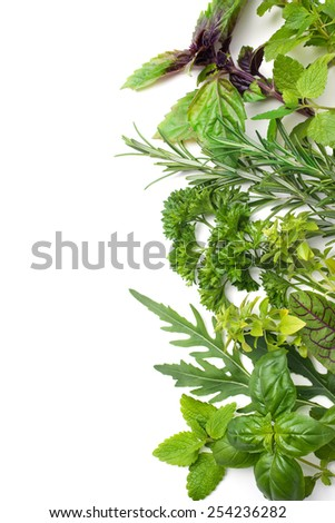 Fresh green herbs isolated over white background - stock photo