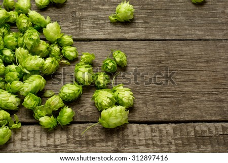 Fresh green hops on a wooden table. - stock photo