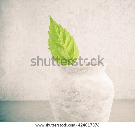 Fresh green leaf in old vase, symbol of environment and new life. Still life and concept image of eco awareness, nature, beginnings, growth and ecology.  - stock photo