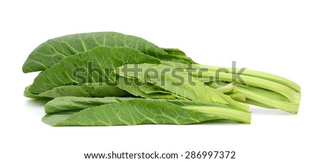 fresh green leaves of collards isolated on white  - stock photo