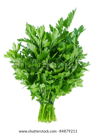 Fresh green leaves of parsley on white background