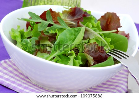 Fresh green lettuce, arugula and spinach mixed salad in white plate close up.Healthy food,dieting concept. - stock photo