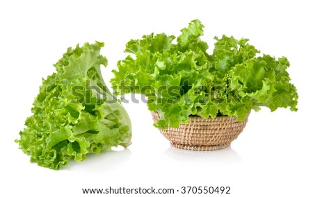 Fresh green lettuce in the basket isolated on a white background - stock photo