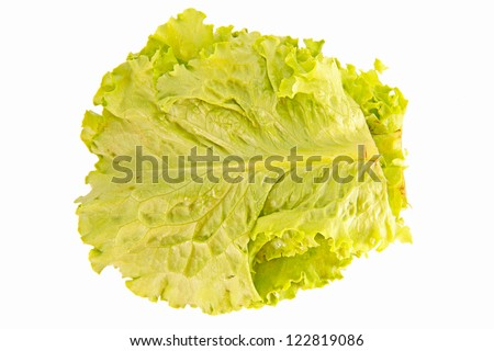 Fresh green lettuce isolated on white - stock photo