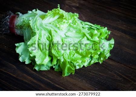 Fresh green lettuce  on the dark wooden table. Selective focus. - stock photo