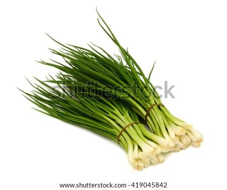 fresh green onion isolated on white background - stock photo