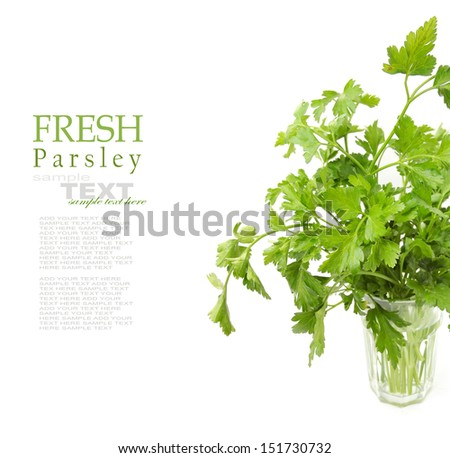 Fresh green parsley in the glass isolated on white