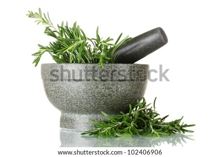 fresh green rosemary in mortar isolated on white