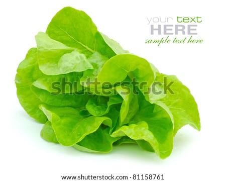 Fresh green salad isolated on white background - stock photo